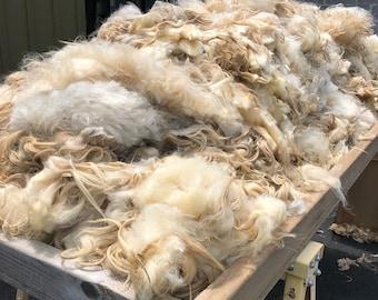 Karakul Fleece