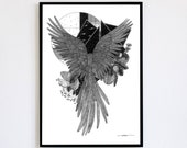 Nocturne Limited Edition numbered and signed copies 30x40cm Poster Decoration Poster Bird