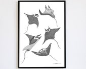 Mantas Limited Edition edrids numbered and signed 30x40cm Poster Decoration Of arms Mantas
