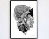 Balance Limited Edition numbered and signed 30x40cm Poster Poster Turtle