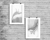 Whales illustration - Diptych - Card postcard print