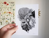 Balance A6 A5 Illustration Postcard Decoration Shows Turtle Corals Ocean Seabed