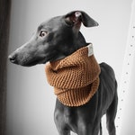 Hand knitted Snood for Italian Greyhounds | Dark Sand