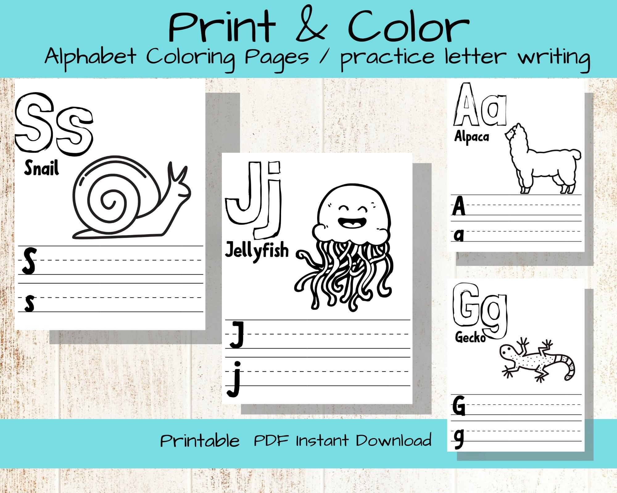 Abc Alphabet Coloring Pages Letter Practice Kids Printable Etsy