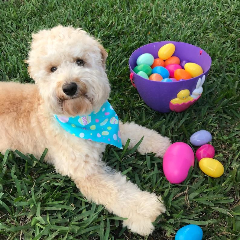 Dog lover Gift Bandana for Dogs Doggies Boy Dog Gift Pet Lover Gift Pastel Easter Egg Dog Scarf Girl Dog Gift Easter Dog Bandana