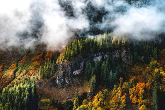 Stevens Canyon MT Rainier