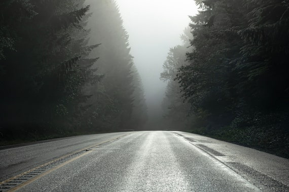 Pacific Northwest Drives