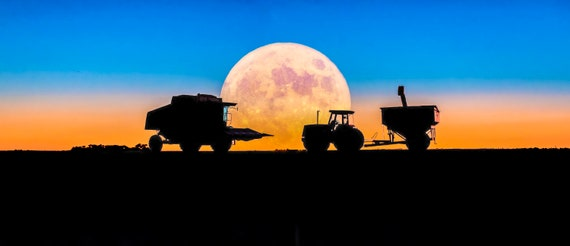 Harvesting under the Harvest Moon