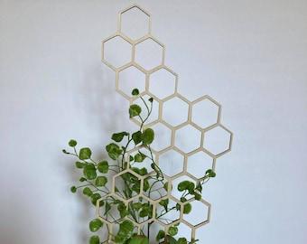 17'' 7'' 10''  | Plant Trellis | FAST SHIPPING | Honeycomb Houseplant Trellis | Indoor Garden Trellis | Plant Lover Gift | Insured Shipping