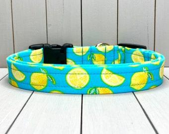 "3/4"" Medium Dog Collar, Handmade, Fabric Covered Nylon Webbing, Ready to Ship ~ Lemons"