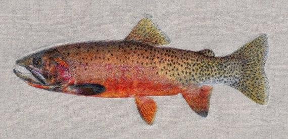 Mill Creek morph Oncorhynchus clarkii lewisi or Westslope Cutthroat Trout