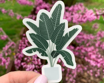 Birds of Paradise Plant Clear Sticker   Die Cut Decor Laptop Water Bottle Cute Stickers