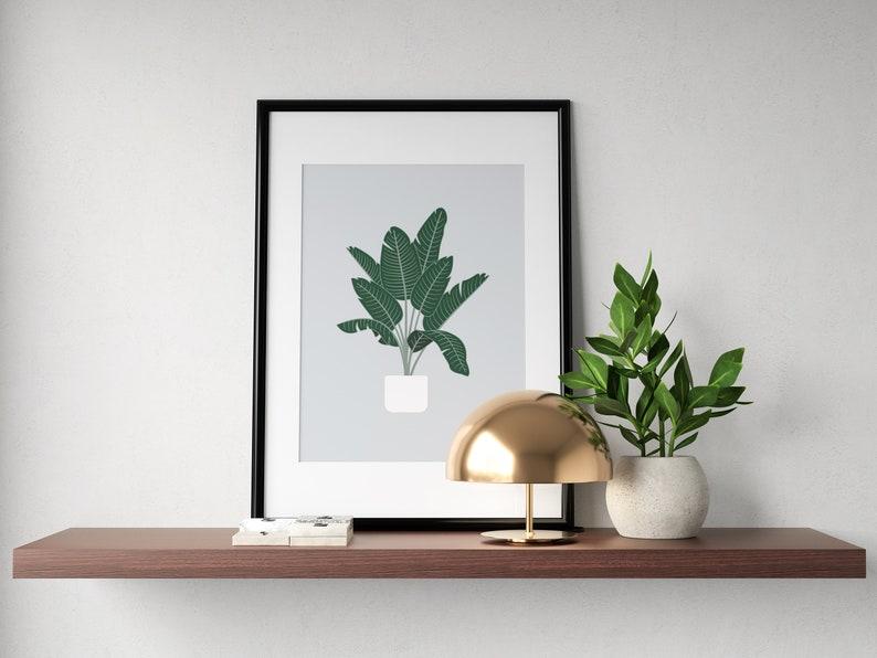Bird of Paradise Tree Plant Prints  Botanical Illustration Gray