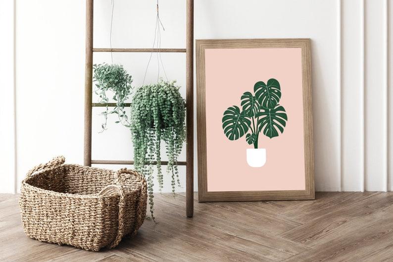 Monstera Plant Prints  Botanical Illustration Print  Leaf Pink