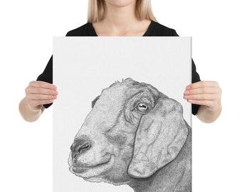 Nubian Goat on Canvas