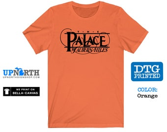The Palace of Auburn Hills - Detroit Basketball - DTG Printed Soft Jersey T-Shirt