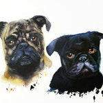 Custom Hand-painted Watercolor Pug Portrait from Photo, Custom Pet Painting, Original Painting of your Pet, Custom Pet Portrait