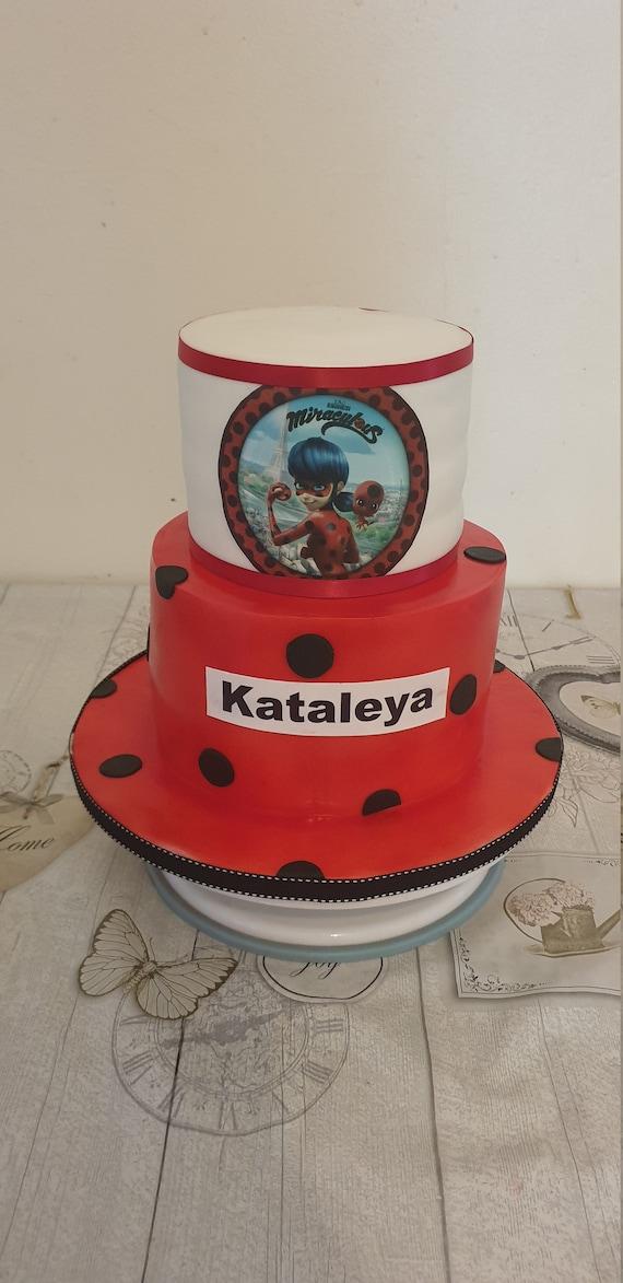 Fabulous 2 Tier Miraculous Ladybug Birthday Cake Etsy Funny Birthday Cards Online Aeocydamsfinfo