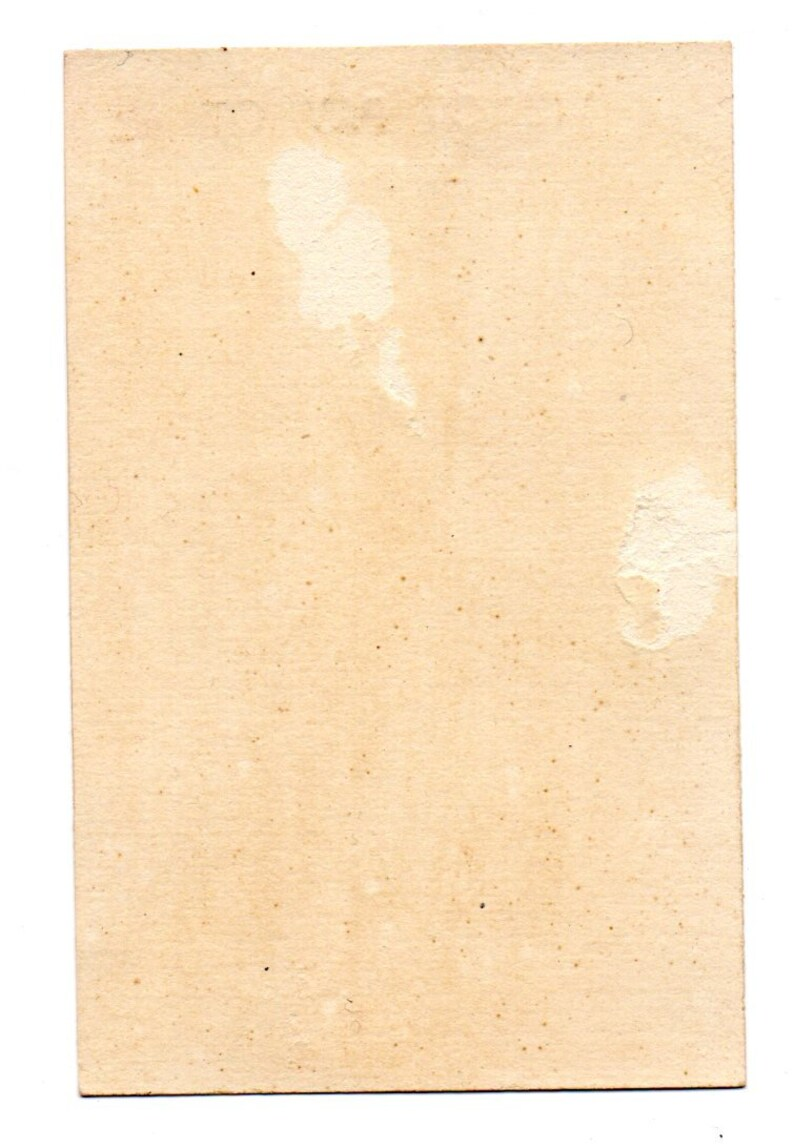Chromo 19th Century Fairy Spirit of Nature Victorian card Scrapbook