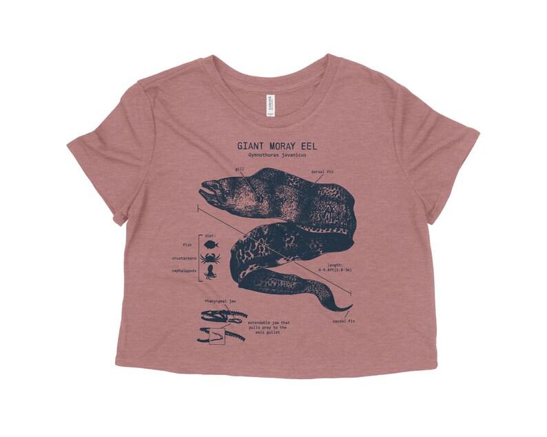 Gifts for Girlfriend Marine Biology shirt Beach Crop Top Beach Cover Up Moray Eel Shirt Giant Moray Eel Anatomy Crop Top Beach Shirt