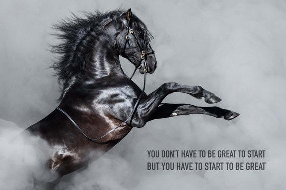 4 Framed Spirit Leadership Excellence Freedom Horses Eagles Motivational Posters