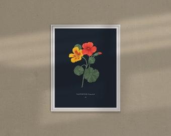 Nasturtium Print