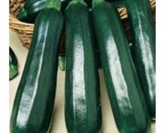 10 Graines de Courgette Green Bush Semences légume d/'héritage Non hybrides