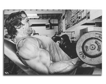 Y1517 Art Wall Poster Arnold Schwarzenegger Bodybuilding Muscle Star