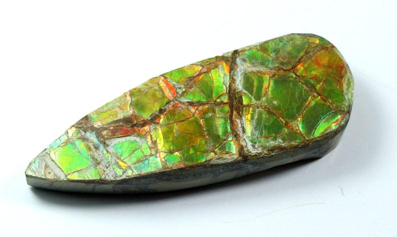 Ammolite Natural Cabochon Ammolite Gemstone Loose Gemstone 50 Carat 44x17x8 MM