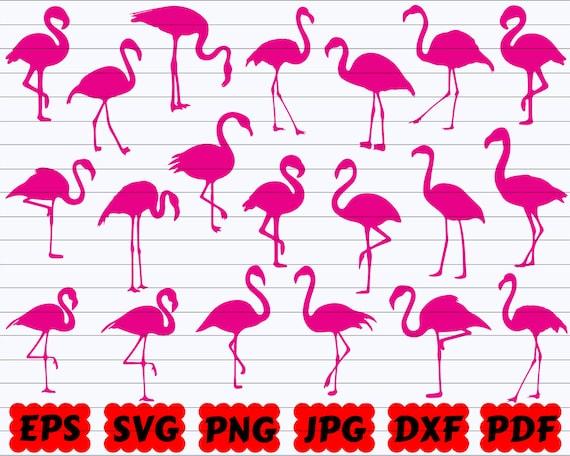 Flamingo SVG | Bird SVG | Flamingo SVG Bundle | Flamingo Cut File | Flamingo Clipart | Flamingo Silhouette | Bird Cut File | Bird Clipart
