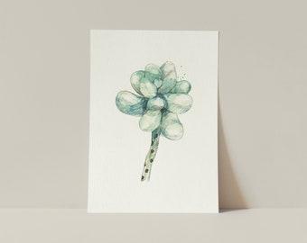 Moonstone Succulent   Watercolor   Art printing   Fine Art Print