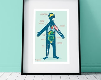 Poster A3 Human body, poster, mural art, decoration, print, digital, recycled paper, learning, organs, children, illustration,