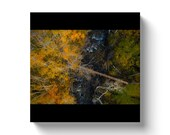 Aerial Photograph Colorado Aspens & Creek Bridge In Fall Canvas Gallery Wrap