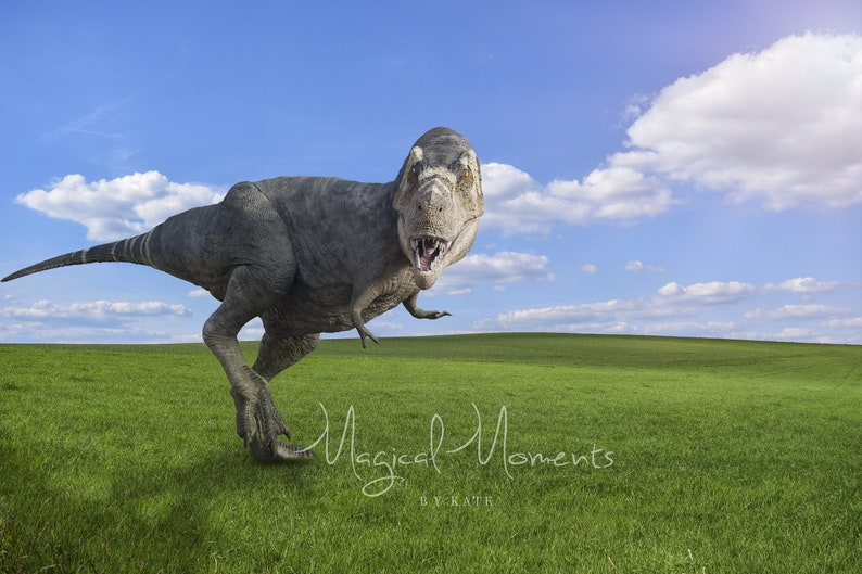 TWO Dinosaur Digital Backgrounds INSTANT DOWNLOAD! Birthday Dinosaur with Balloon Backdrops for photographers
