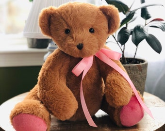 Recordable Teddy Bear Walmart, Recordable Bear Etsy
