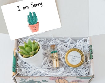 Apology Gift Etsy