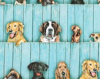 Dog Curtains Etsy