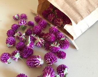 Bag of Dried Gomphrena (Globe Amaranth) flower heads- crafting- Purple