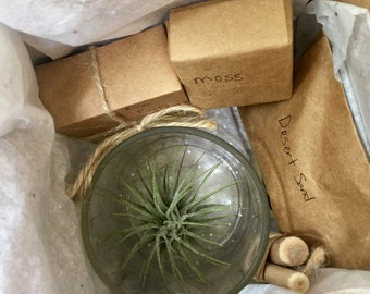 Air Plant Terrarium DIY Kit-- Made from recycled, upcyled glass jar