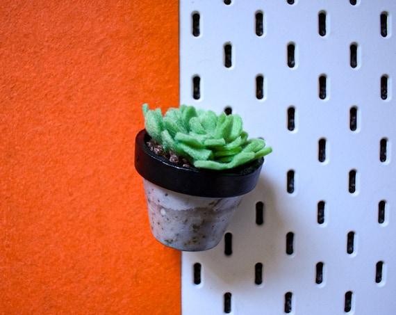 Large Felt Succulent - Bright/Dark/Grass Green - Black Concrete Pot