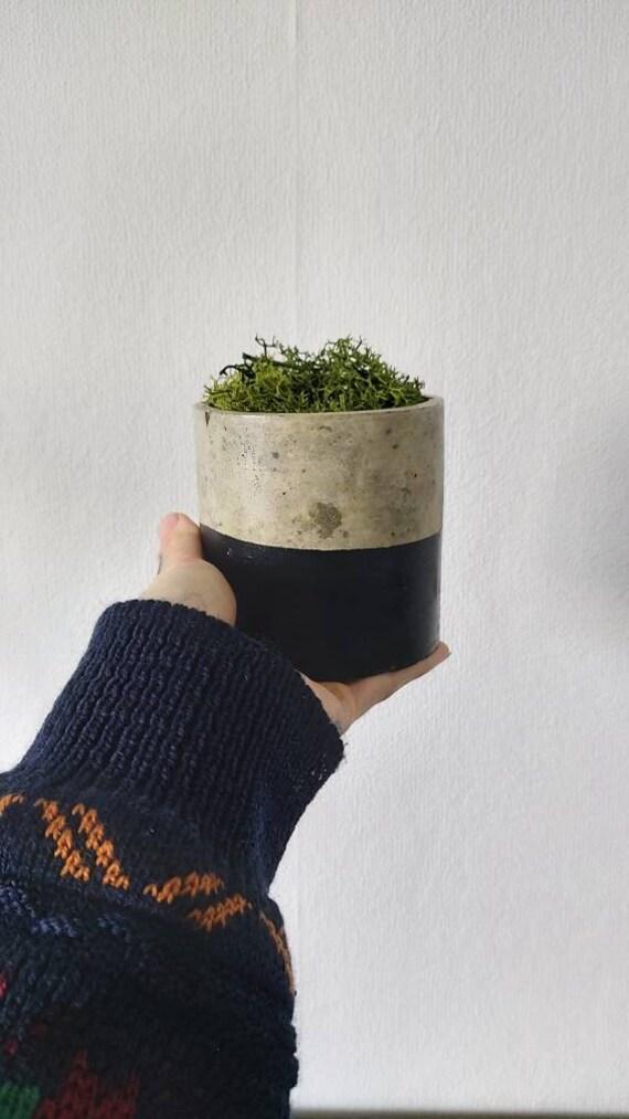 Handmade Concrete Pots - Round - Dipped Black - Moss Plant Option