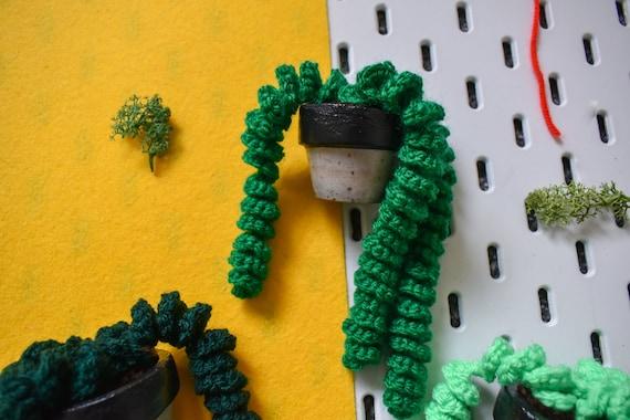 Handmade Crochet Succulent Plant - Twirly/Pig Tail - Black Concrete Pot