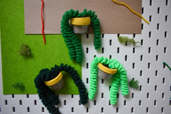 Handmade Crochet Succulent Plant - Twirly/Pig Tail - Yellow Concrete Pot