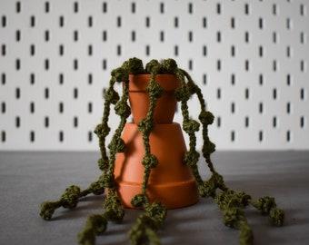 Crochet Trailing Plant - String of Pearls Succulent - Handmade