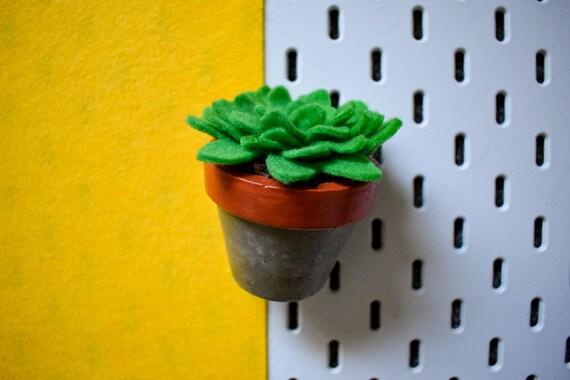 Large Felt Succulent - Bright/Dark/Grass Green - Amber Concrete Pot