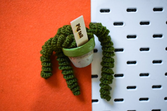 Handmade Crochet Succulent Plant - Twirly/Pig Tail - Green Concrete Pot