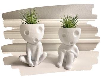 """Cute Air Plant Holders """"Kooki & Keera"""" / Kodama Tree Spirit Planters"""