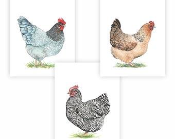 Chicken Art Etsy