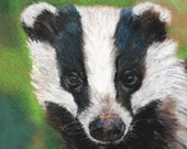 Top quality giclee print of 'Young Badger' a painting by artist Janet Bird