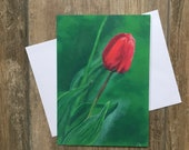 Dew drop tulip - large greeting card by UK artist Janet Bird